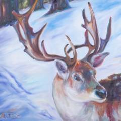Reindeer by Tetrachromat Artist Concetta Antico