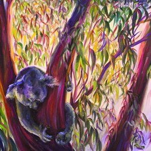 Koalaphoria