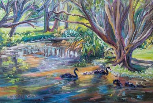 Swan Lake Love