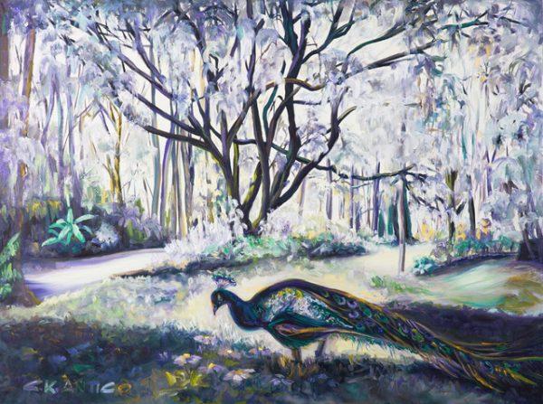 Peacock In Heaven's Meadow