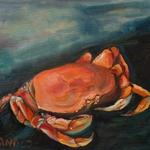 One Mud Crab