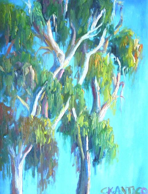 Sun Bathing Eucalyptus