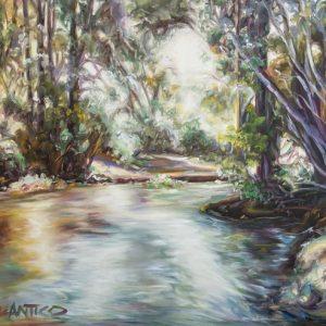 The Billabong, Kangaroo Valley, NSW, Australia